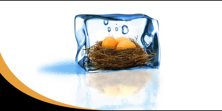 isolatie op zijn best voor een lekker warm nest - allisol bvba